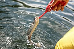 Opening Day (Carin Jones - Jonesing for Jewelry) Tags: camping camp lake fish water river washington fishing wanderlust adventure explore trout