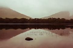 Break of Symmetry (PauloRossi) Tags: trees ireland irish mountain lake reflection galway water abbey stone symmetry connemara symmetric irlanda kylemore