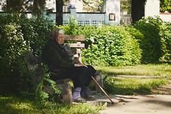 Starica (Sareni) Tags: park light colors grass vintage bench spring bush shadows path serbia april baka vojvodina odmor twop srbija banat 2016 trava prolece boje svetlost klupa staza senke starica alibunar juznibanat sareni