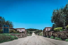 20160422-_DSC8466.jpg (Jorge A. Martinez Photography) Tags: family green fun nikon day wine weekend sunny hills tasting fx pasorobles jada sextant d610 lecuvier sigma24105 turrley
