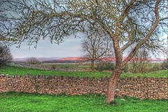 A View of Lancashire from Cumbria (The Frantic Photographer) Tags: england wall countryside drystonewall aspect