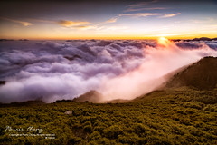 Albizzia julibrissin mountain, Taiwan  ( (Morris)) Tags: blue sunset sky orange cloud green car yellow nikon oldstyle ngc taiwan      tw                    108k    d7100