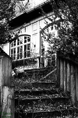 stairs to a deserted location (d.kaehlke) Tags: bw white black leave stairs canon germany outside bavaria eos blackwhite abandon tamron deserted tamron2875mmf28 750d