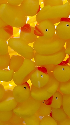 vertical pile of Yellow Rubber Duckies