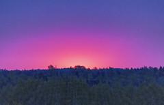 Sunrise in May 2015 (ri Sa) Tags: trees sky sunrise finland helsinki