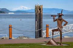 Jake James' Pirate (Cameron Knowlton) Tags: canada statue ferry vancouver marina island boat nikon mt baker bc mount vancouverisland anacortes dimension sidney mountbaker mtbaker d610 anacortesferry