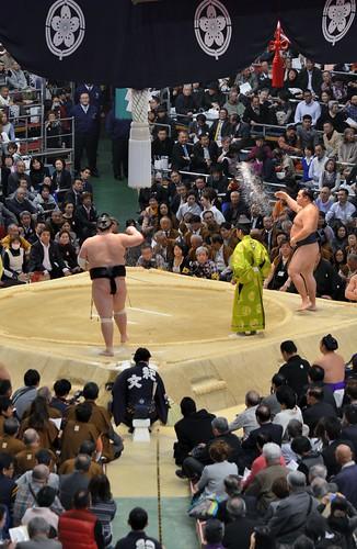日馬富士 画像8