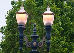 Morning Streetlights (Orbmiser) Tags: trees oregon portland spring nikon streetlight lamppost d90 55200vr