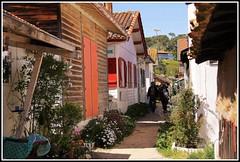 Village ostricole de l'Herbe (Les photos de LN) Tags: promenade ruelle plage cabane alle bassindarcachon pcheurs lherbe aquitaine impasse villageostricole