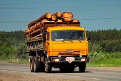 KamAZ-55105   340  45 (RUS) (zauralec) Tags: 45 340 rus   kurgancity therouter254irtysh kamaz55105