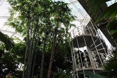 Palm House Kew (pesce_d_aprile) Tags: uk plants kewgardens london kew europe unitedkingdom greenhouse serra palmhouse botanicgardens royalbotanicgardens tropicalplants royalbotanicgardenskew palmhousekew palmhousekewgardens