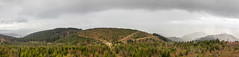 Panorama Landscape Art (rudolphfelix) Tags: panorama black art forest canon landscape eos landschaft wald schwarzwald 600d