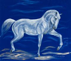 Schimmel auf blauem Samt (kunstgrafik) Tags: pose kunst blau weiss pferd samt tier stolz schimmel hengst lgemlde luethi zeitgenssisch abdelghafar