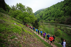 2015 Wasserlauf-212 (Wiesentler Wasserlauf) Tags: wiese basel trail lrrach schwarzwald zell steinen feldberg kamerun lauf schopfheim wiesental todtnau schnau wasserlauf teamworx4 dikome