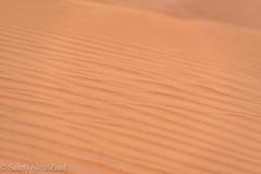 _DSC2750 (Al Mazyed) Tags:   alzulfi