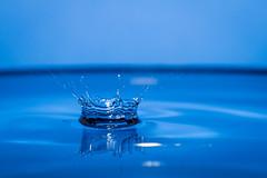 JWFiori_8716.jpg (Jason Fiori) Tags: macro water project 365 009 highspeed