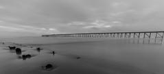 Distant (Steven Peachey) Tags: uk longexposure sky seascape beach monochrome canon mono pier sand exposure le hartlepool northeastcoast ef1740mmf4l lee09gnd leefilters canon6d steetleypier lee06gnd lightroom5 hawkdog