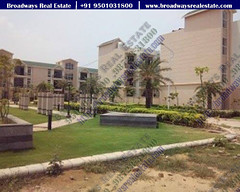 Progress of celestia royal new chandigarh