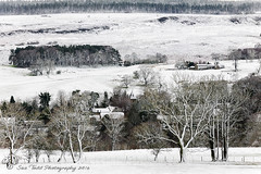 Looking down on Eglingham from Tarry and over to Beanley Woods (Sue_Todd) Tags: winter snow ice northumberland snowfall eglingham beanleywood