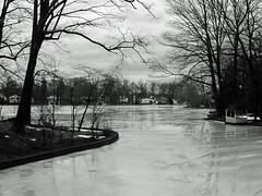 02-04-16 (AbbyB.) Tags: winter nj rainbowlake denville