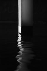 Ataraxie (Gerard Hermand) Tags: 1507257162 reflection gerardhermand france paris eos5dmarkii black blanc eau museum musee noir palaisdetokyo reflet reflexion water white canon