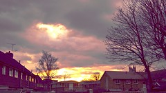 City Skyscape (gemmasmith665) Tags: city trees winter sunset sky nature skyline clouds buildings skyscape cityscape dusk