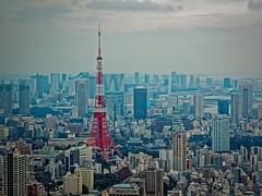 2016-02-06 15.48.40 (pang yu liu) Tags: travel japan tokyo daily 02   feb    2016  52f