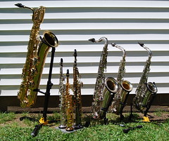 Saxophone Family (NCReedplayer) Tags: instrument musicalinstrument sax alto saxophone woodwind soprano conn tenor sopranino baritone grassi buescher cmelody