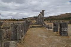 imgp3787 (Mr. Pi) Tags: ruin hills morocco column volubilis archaeologicalsite