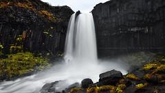 The Black Fall (FredConcha) Tags: nature rain landscape waterfall iceland nationalpark rocks lee d800 svartifoss blackfall fredconcha