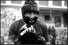 eye of the tiger (Rgis Dubois) Tags: man training fight boxing combat boxe entrainement boxeur