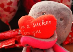 I'm a sucker for you! (Charlotte Ruck) Tags: decorations love hearts soft balloon gift present octopus valentines occasion pun