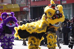 Lion dance (Billy Kuan-yin Chen) Tags: nyc newyorkcity newyork asian chinese parade queens lunarnewyear liondance flushing asianculture