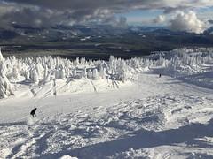 IMG_0122 (SnowSkool) Tags: ski snowboarding skiing bigwhite snowskool skitraining skiinstructorcourse snowboardinstructorcourse snowboardtraining