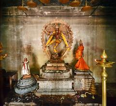 India - Tamil Nadu - Thanjavur - Brihadeshvara Temple - Nataraja (The Dancing Shiva) - 355 (asienman) Tags: india statue thanjavur nataraja tamilnadu brihadeshvaratemple asienmanphotography