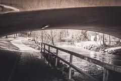 water under the bridge. (adornoir) Tags: bridge eye water march noir handrail banister railing mrz erlangen 2016 adornoir ollistorch