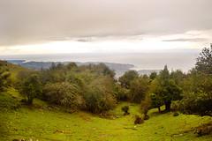 Montaas marinas (espoopse) Tags: sea mountain forest mar bosque contraste colunga lastres sueve cantbrico
