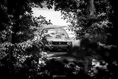 Bergrennen-Homburg-2015-4 (Pascal Martin Photographie) Tags: auto cars car sport vw race volkswagen autos wald rennen hillclimb saarland scirocco 2015 homburg bergrennen
