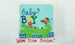 Baby Boy (tasteoflovebakery) Tags: blue boy red baby green yellow cake turtle alligator welcome