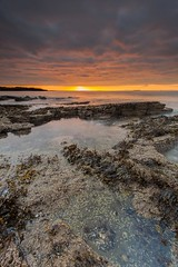 Hummell Rocks Sunset (Chris_Hoskins) Tags: sunset seaweed forth firthofforth eastlothian gullanebay gullanepoint hummellrocks