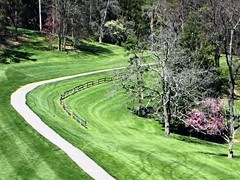 Fence Friday (DonaSite) Tags: sunny greens rollinghills golfers blossomingtrees wheelingwvirginia golfcartpath