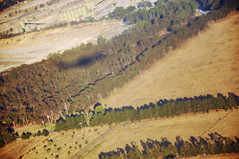 DSC_0630 [ps] - Air Plane (Anyhoo) Tags: shadow summer brown grass fence landscape countryside flying view flight dry australia victoria landing pasture hedge vic geography boundary plain quarry arid lowsun dun inflightentertainment viewfrom windbreak viewfromtheplane anyhoo planeshadow oaklandsjunction photobyanyhoo