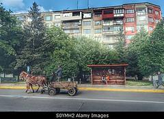 Photo accepted by Stockimo (vanya.bovajo) Tags: road city urban bulgaria cart gypsy iphone bulgarian gypsys iphonegraphy stockimo