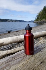 Water bottle enjoys the view, but wonders how long it will be until his owners return... (Librarianguish) Tags: trees red beach forest found lost spring hiking lonely waterbottle laconner 416 kukutalipreserve