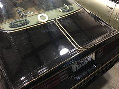 """1978 Bandit Trans Am • <a style=""""font-size:0.8em;"""" href=""""http://www.flickr.com/photos/85572005@N00/26239650585/"""" target=""""_blank"""">View on Flickr</a>"""