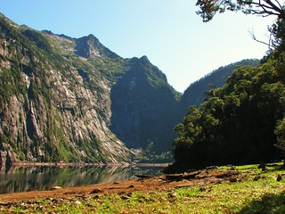 Naturaleza,parque alerce andino,Chile
