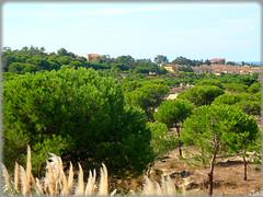 Islantilla (Huelva) (Spain) (sky_hlv) Tags: summer españa praia beach andalucía spain europa europe huelva playa resort verano atlanticocean lepe costadelaluz islantilla islacristina oceanoatlántico