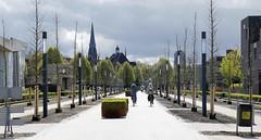 - Roombeek, Enschede - (Jacqueline ter Haar) Tags: light licht spring lente enschede neighbourhood landschap rebuilt roombeek 2016