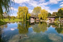 chinese garden (.) Tags: berlin primavera lens spring nikon tokina der frhling welt marzahn grten hellersdorf grtenderwelt d7100 1116mm