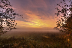 In the mist (jan.arnds) Tags: trees light sunset orange cloud brown mist nature field clouds outdoor harmony fields gras through pferde shimmering endless janarnds
